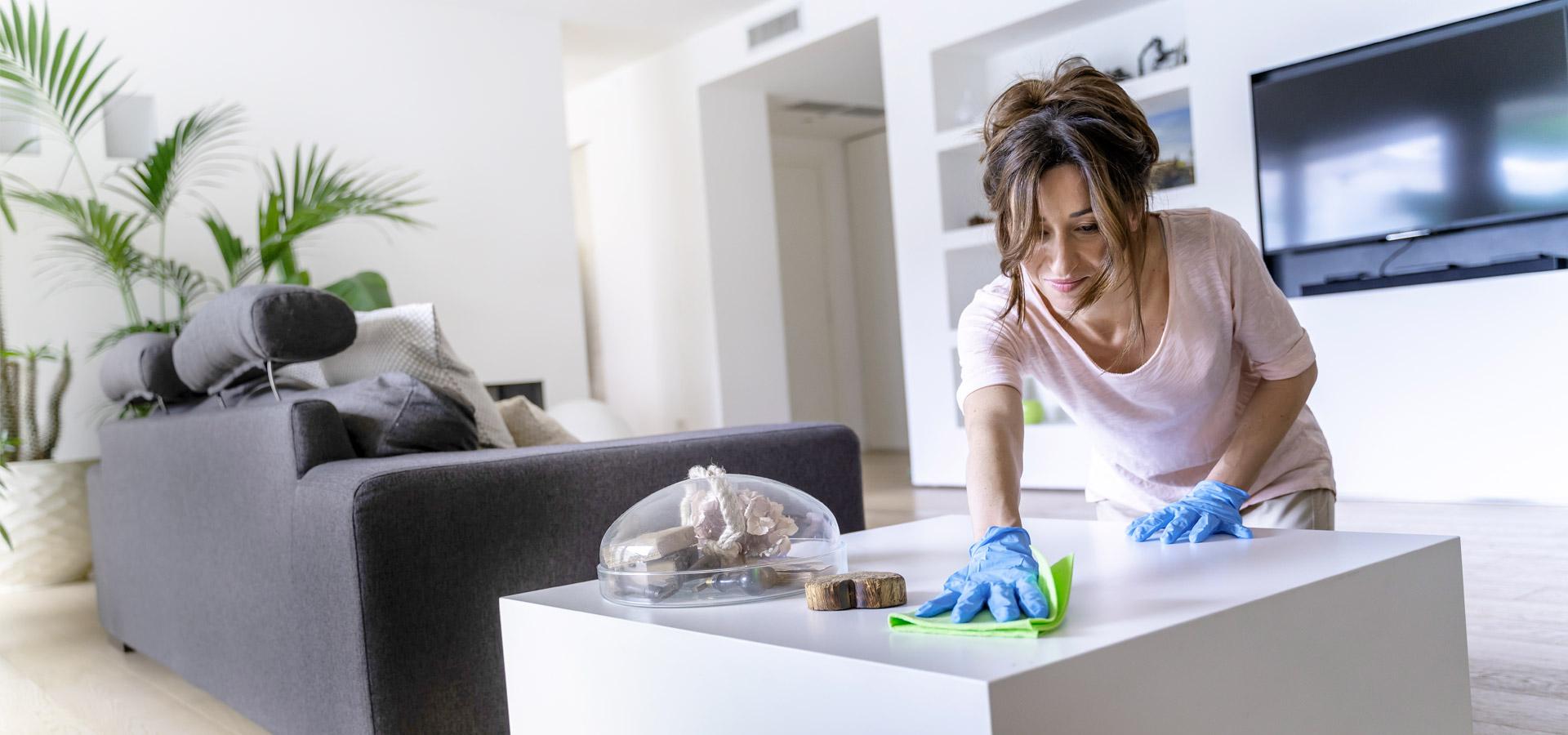 Giochi Di Pulire La Casa pulire ecologico | ozobox: disinfezione acqua con ozono